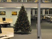 Christmas tree in the Branch Library Main Campus