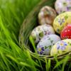 Ostereier in einem Körbchen im Gras